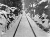 Old_Madrona_trolly_tracks
