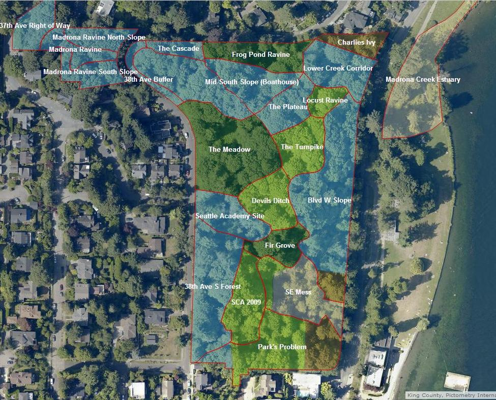 Cool GIS Map of our Park Friends of Madrona Woods